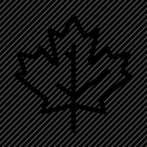 autumn, canada, day, leaf, maple, thanksgiving, tree icon