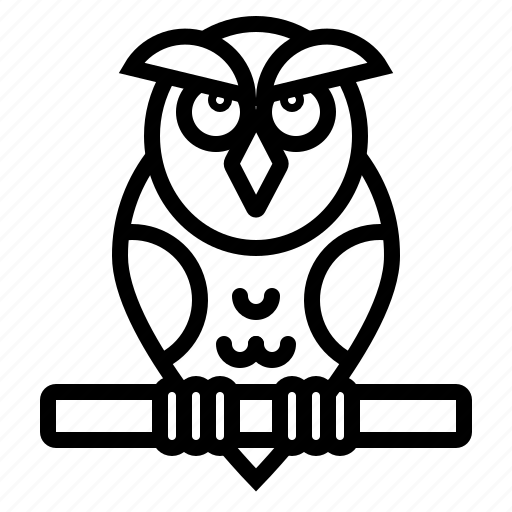 animal, bird, education, owl, wisdom icon