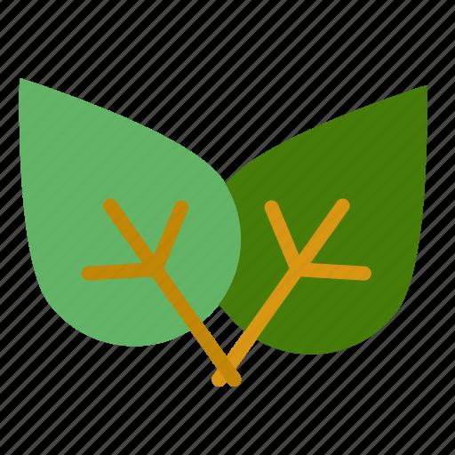 eco, green, leaf, nature icon
