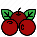 berries, cranberries, fruit, red icon