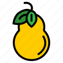 food, fruit, nature, pear icon