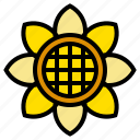 flower, nature, spring, sun, sunflower icon