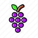 fruit, grape, grapes, vine icon