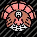 animal, animals, bird, chicken, thanksgiving, turkey, wild icon