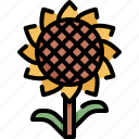 environment, floral, flower, garden, nature, plant, sun icon