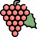 fresh, fruit, grape, health, healthy, vegetable icon