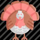 animal, bird, chicken, thanksgiving, turkey icon