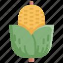 corn, food, fruit, healthy, meal, vegetable