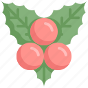 berry, fruit, health, healthy, vegetable