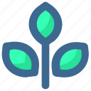 autumn, leaf, plant, thanksgiving icon