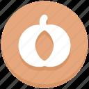 autumn, food, pumpkin, thanksgiving, vegetable icon