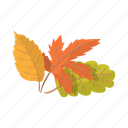 autumn, cartoon, fall, floral, forest, leaf, oak icon