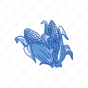 corn, corn husk, corn on the cob, thanksgiving icon