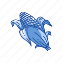 corn, corn husk, corn on the cob, food icon
