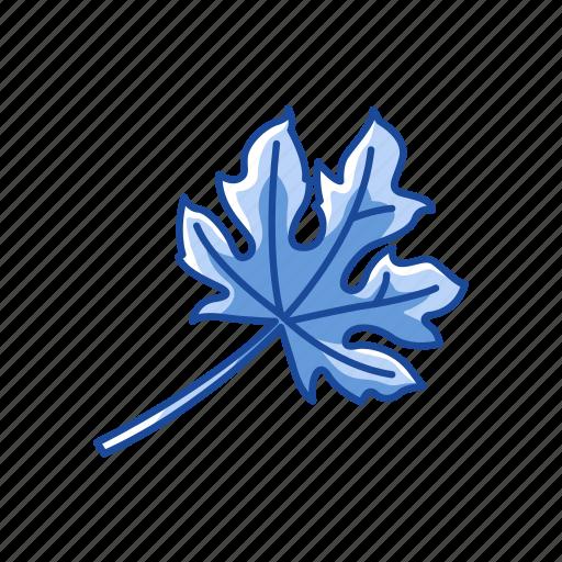 fall, harvest, leaf, leaves icon