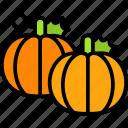 autumn, pumpkin, pumpkins, thanksgiving, vegetable