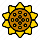 flora, floral, flower, sunflower, thanksgiving icon
