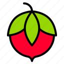 berry, food, fruit, thanksgiving icon