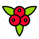 berry, food, fruit, nature, thanksgiving icon