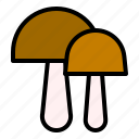 food, fungus, mushroom, thanksgiving, toadstool icon