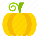 fall, food, pumpkin, thanksgiving, vegetable, vitamin icon