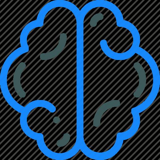 brain, creative, idea, mind, science icon