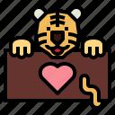 tiger, mammal, wildlife, animal, zoology