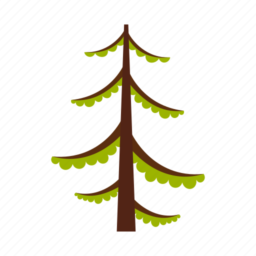 branch, christmas, decoration, fir, pine, spruce, wood icon