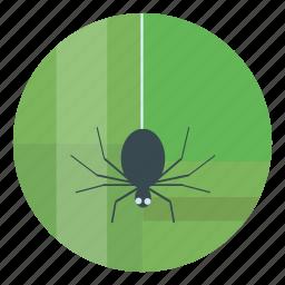 green, halloween, helloween, spider icon