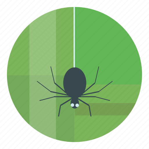 green, halloween, helloween, spider icon