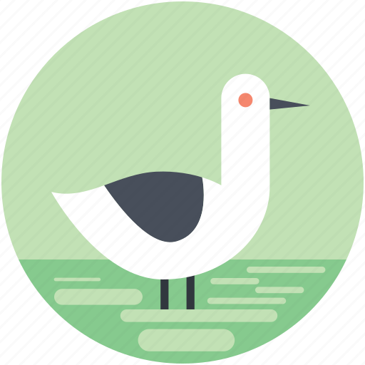 animal, bird, goose, pet animal, standing goose icon