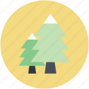 christmas trees, cypress trees, evergreen trees, fir trees, pine trees icon