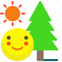 activity, adventure, day, forest, smile, sun, tree