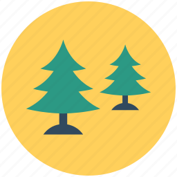 cypress trees, fir trees, nature, pine trees, trees icon
