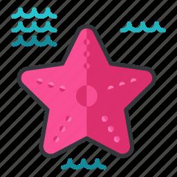holiday, nautical, ocean, sea, starfish, travel icon