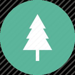christmas, evergreen, nature, park, pine, pinetree icon