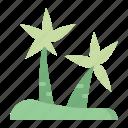 nature, palm, plant, tree
