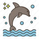 animal, dolphin, dolphin show, ocean, sea icon