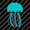 animal. underwater, danger, jellyfish, poisonous, sting, travel, water