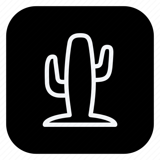cactus, holiday, outdoor, tourism, travel, trip, vacation icon