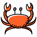crustacea, seafood, edible, food, meal