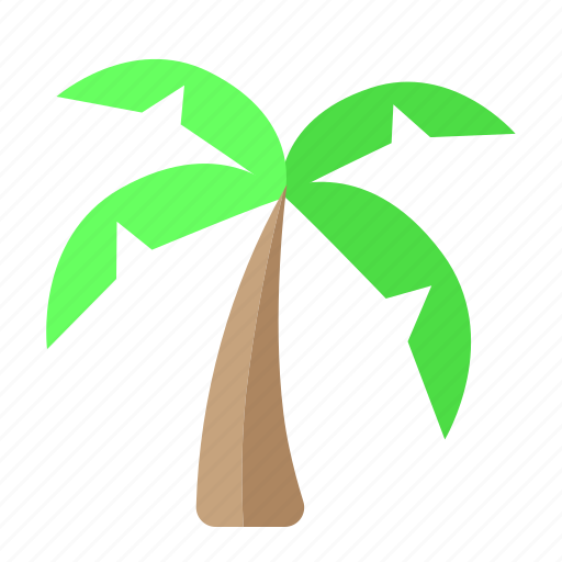 beach, coconut, holiday, traveling, tropis icon
