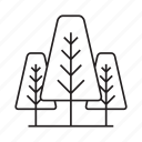 ecology, forest, garden, nature, pine, plant, tree icon