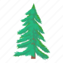 branch, fir, green, nature, plant, tree, wood icon