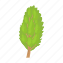cartoon, environment, green, nature, plant, poplar, tree icon