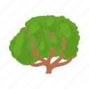 cartoon, environment, green, natural, nature, plant, tree icon