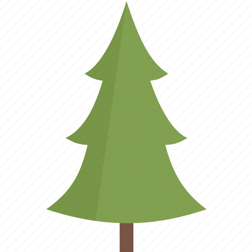 nature, pine, plant, tree icon