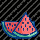 summer, watermelon, fruit, melon, food