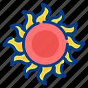 sun, sunny, summer, nature, warm
