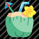 coconut, drink, leisure, party, beverage